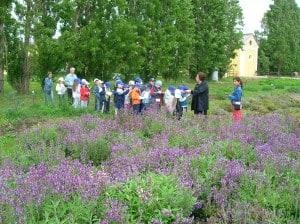 Scuola in visita presso la fattoria didattica Agriturismo La Morella