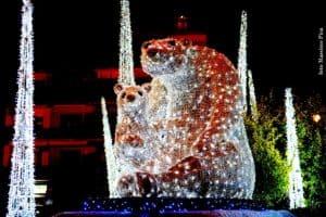 Luci d'Artista, Orso polare