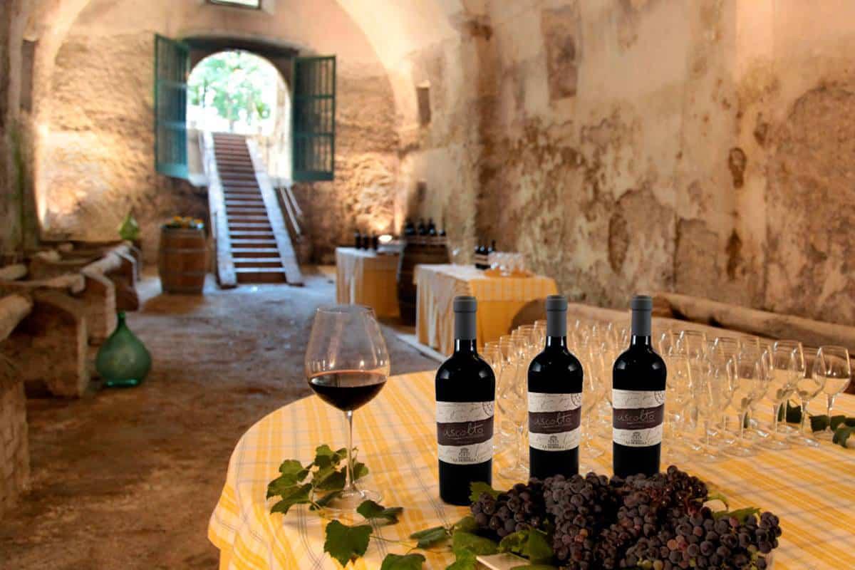 I vini della masseria La Morella