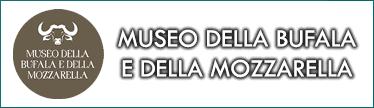 museobufalamozzarella_pulsante