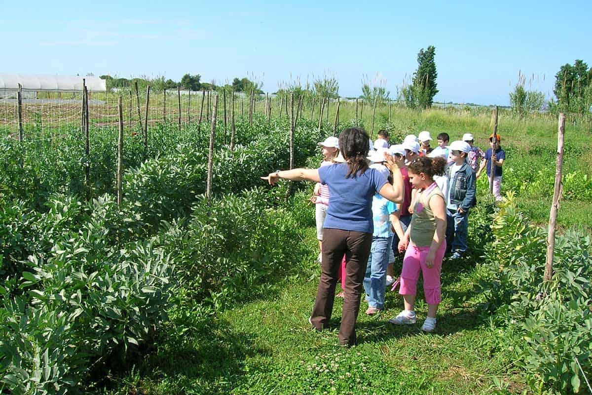 Agriturismo con fattoria didattica